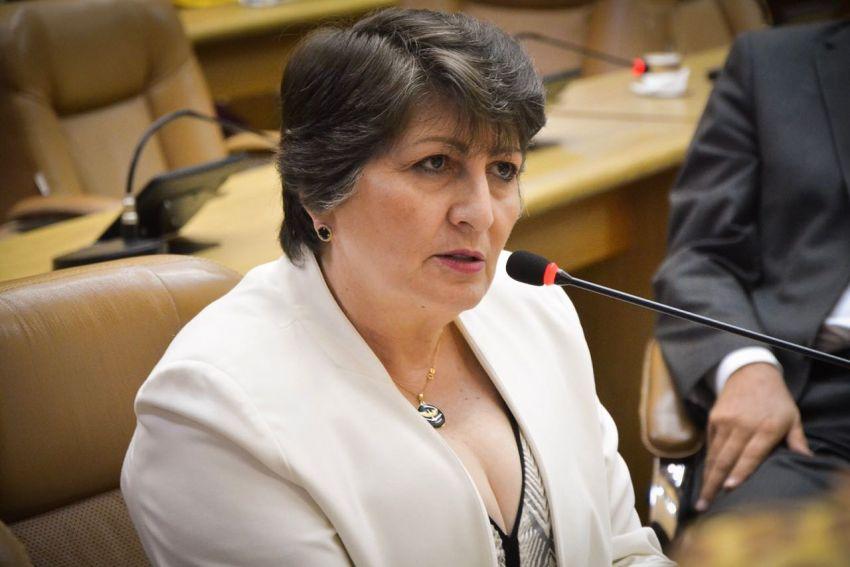 Para deputada, o Governo precisa adotar medidas para fortalecer o combate ao crime organizado