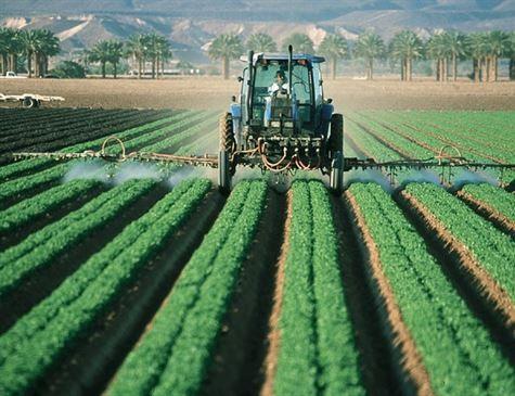 Chuva na região Nordeste permitirá a produção de 4 milhões de toneladas de grãos