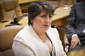 Maria apela por políticas eficientes de combate à violência contra a mulher