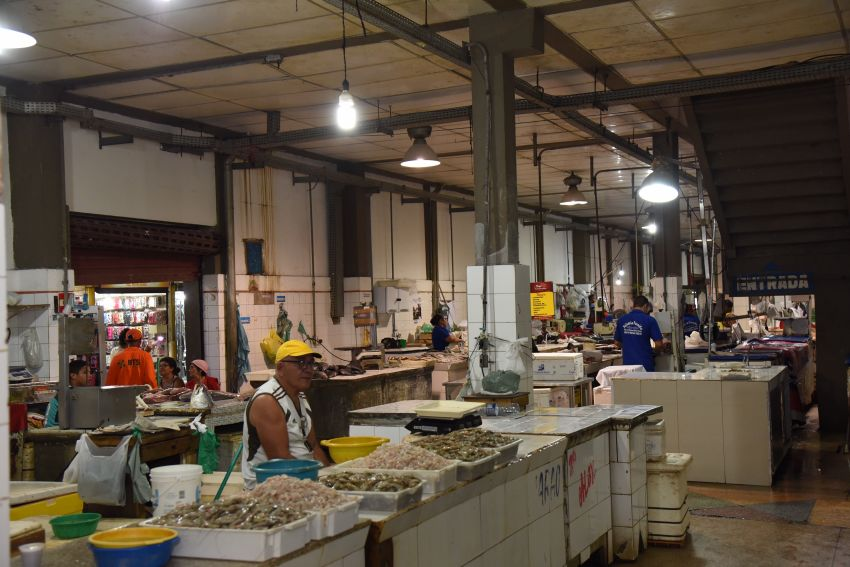 Edvaldo autoriza fornecimento de câmara de resfriamento de peixe para o Mercado Virgínia Franco