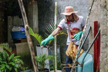Governo divulga calendário da Brigada Itinerante de Combate à Dengue desta semana