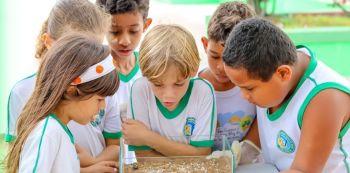 Projeto escolar estimula a produção de alimentos entre estudantes de Poço Verde