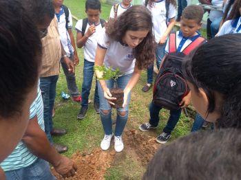 Governo do Estado adere as ações do mutirão nacional de plantio de árvores