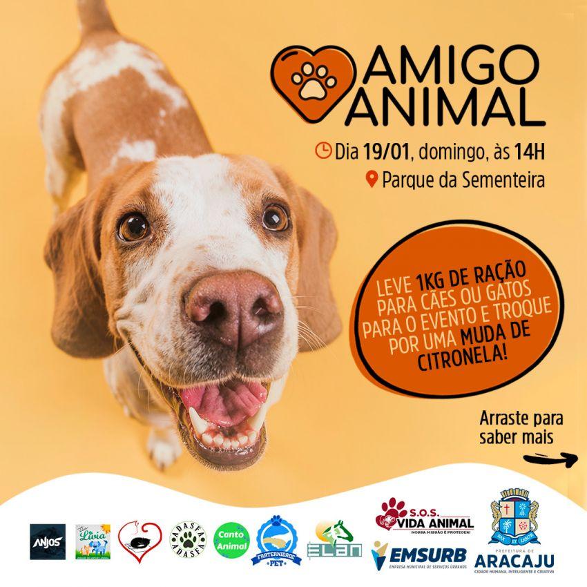 Projeto Amigo Animal chega à sua quarta edição neste domingo, 19