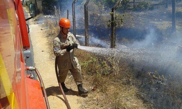 Mais de 1,5 mil chamados para combate de incêndios em vegetação são registrados pelos Bombeiros