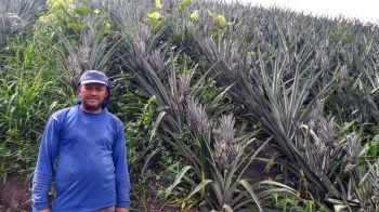 Propriedade em Capela é referência na diversificação da fruticultura