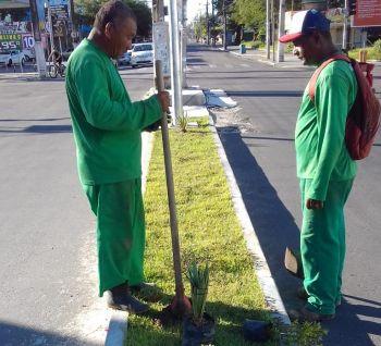 Prefeitura dá continuidade ao plano de compensação ambiental na avenida Hermes Fontes