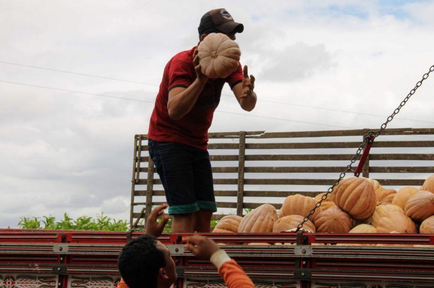 Governo lança editais do Programa de Aquisição de Alimentos para fornecedores e unidades recebedoras