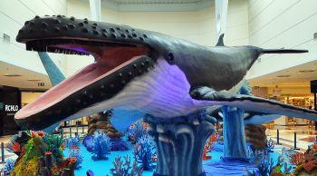 Últimos dias da exposição internacional 'O Fantástico Mundo Marinho' em Aracaju