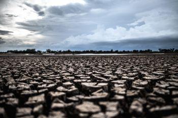 Crise hídrica: 'Chegamos a um ponto drástico para todo o meio ambiente', diz especialista